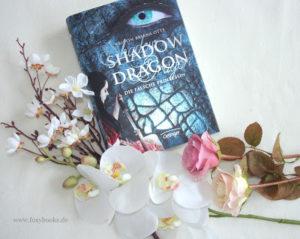 [Rezension] Shadow Dragon- Die falsche Prinzessin – Kristin Briana Otts